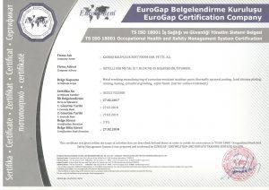 ISO 18001 İş Sağlığı ve Güvenliği Yönetim Sistemi Belgesi - İngilizce